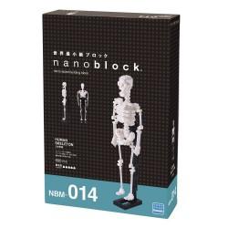 Nanoblock :: Esqueleto Humano